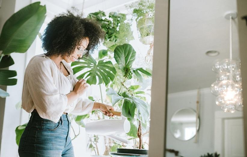 الأسمدة محلية الصنع للنباتات المنزل