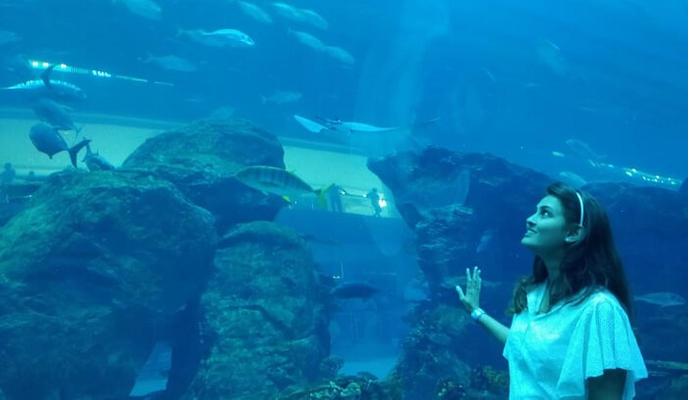 حوض البحر