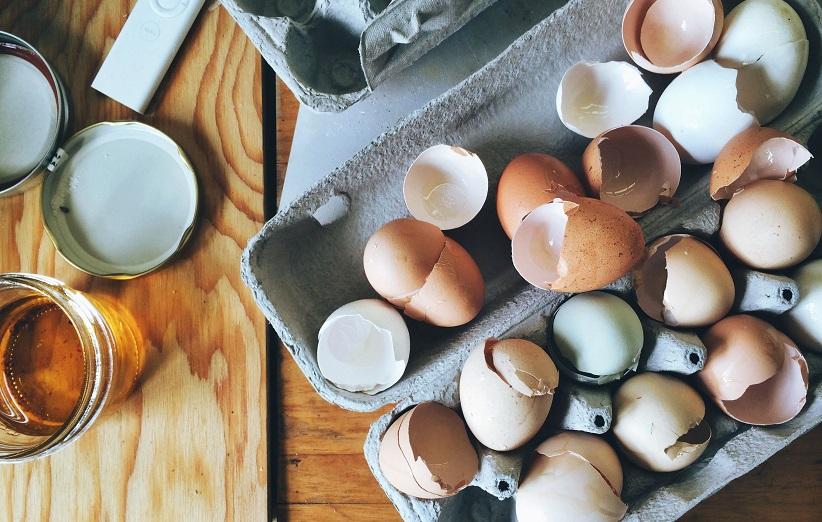 قشر البيض للنباتات المنزلية