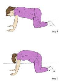 التدريب التمرين في الحمل - كرنك الحركة على أربعة أرجل وأقدام