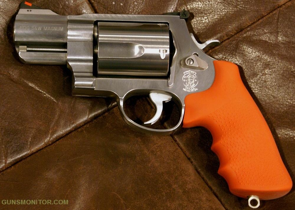 1576987188 209 مسدس هذا هو حيوان بري أكو وب