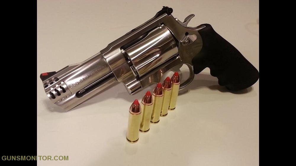 1576987188 277 مسدس هذا هو حيوان بري أكو وب