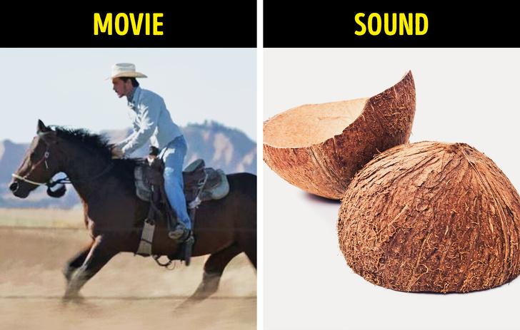 حصان المشي - جوز الهند