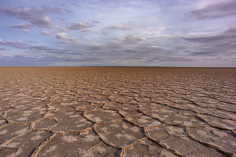 أرضية الصحراء