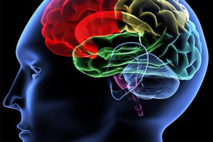 مضادات الاكتئاب - الأدوية التي تزيد من هرمون السيروتونين في الدماغ