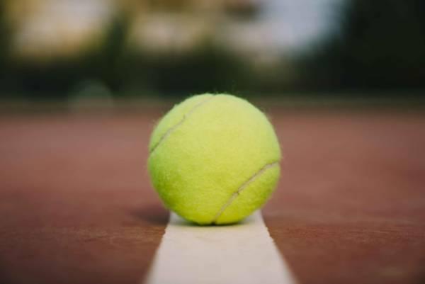 حكم التنس