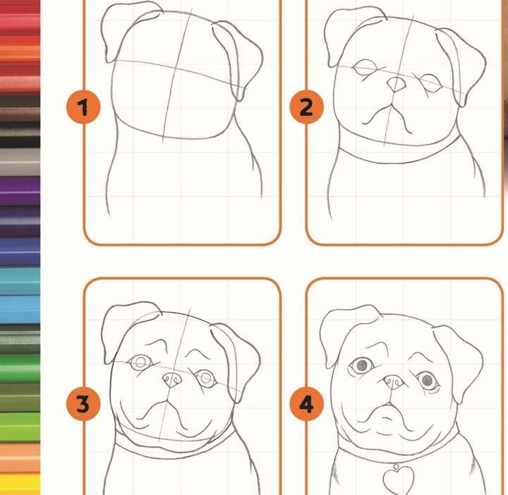 الخوف من الكلاب - رسم الكلاب