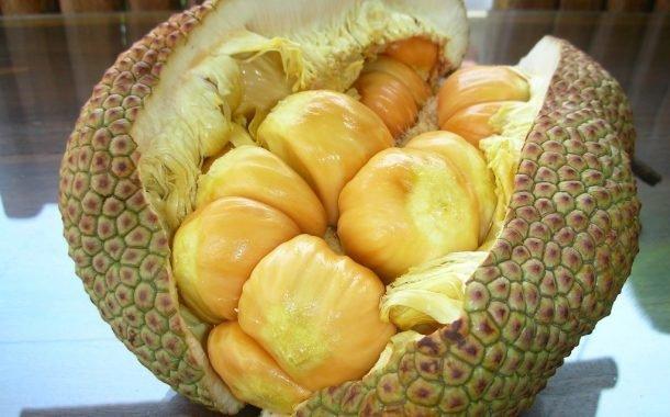 دوريان الفاكهة
