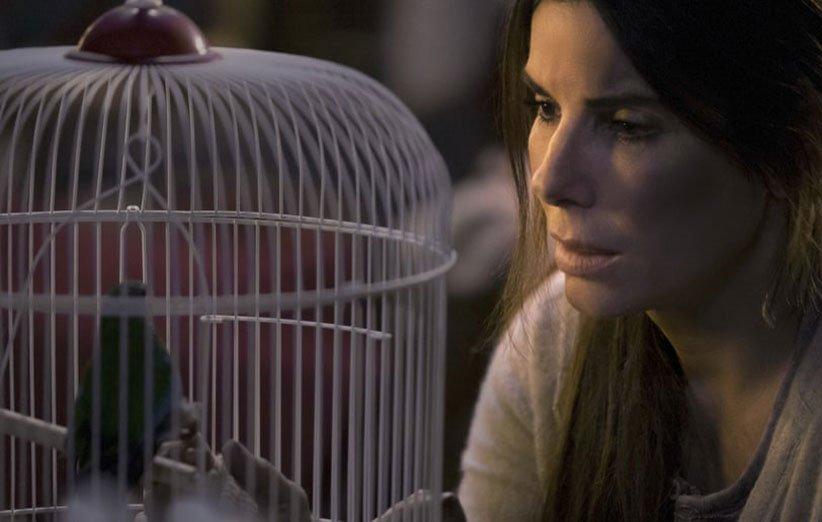 أكثر أفلام Netflix Bird Box التي تمت مشاهدتها
