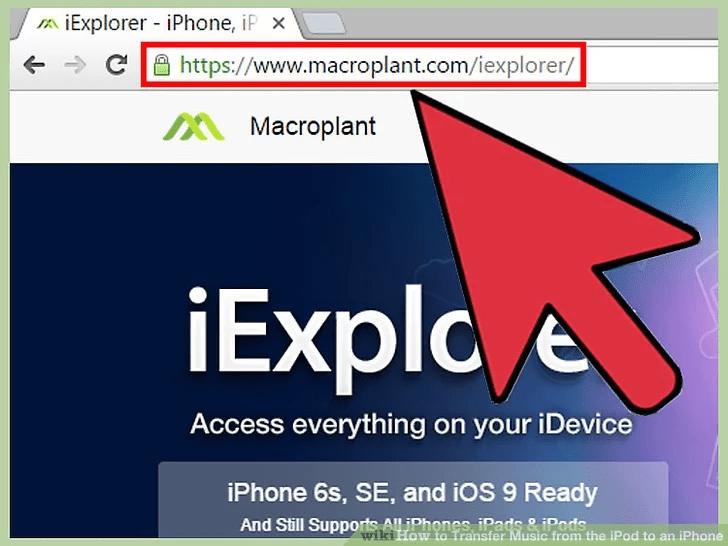 من أحد المتصفحات ، انتقل إلى موقع iExplorer الرسمي