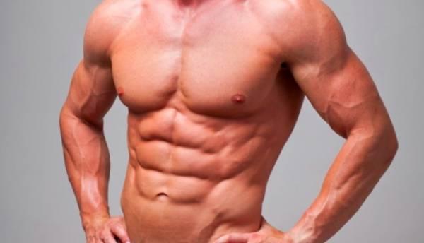 تقسيمة عضلات البطن