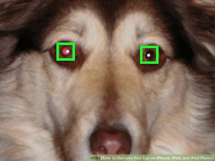 اضغط على أي من العيون الحمراء