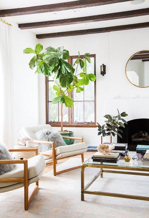 تصميم غرفة المعيشة الصغيرة