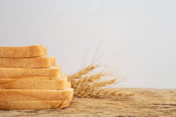 حاوية تخزين الخبز