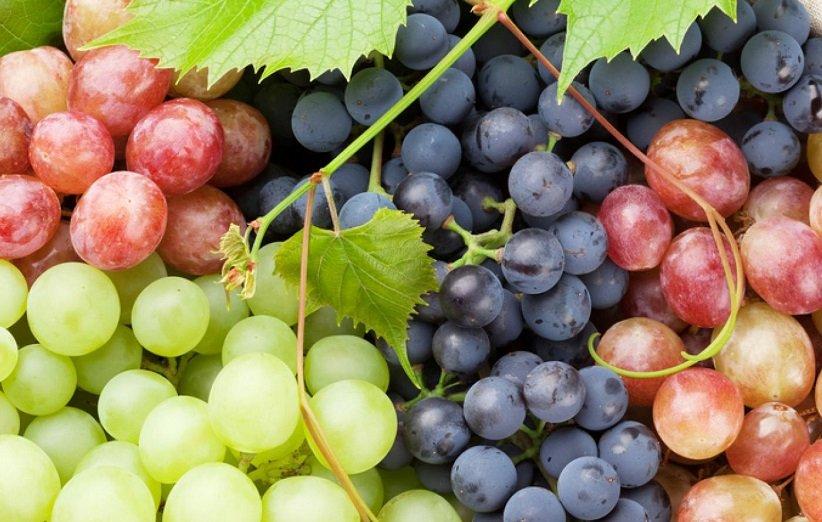 العنب من أصح الفواكه في العالم