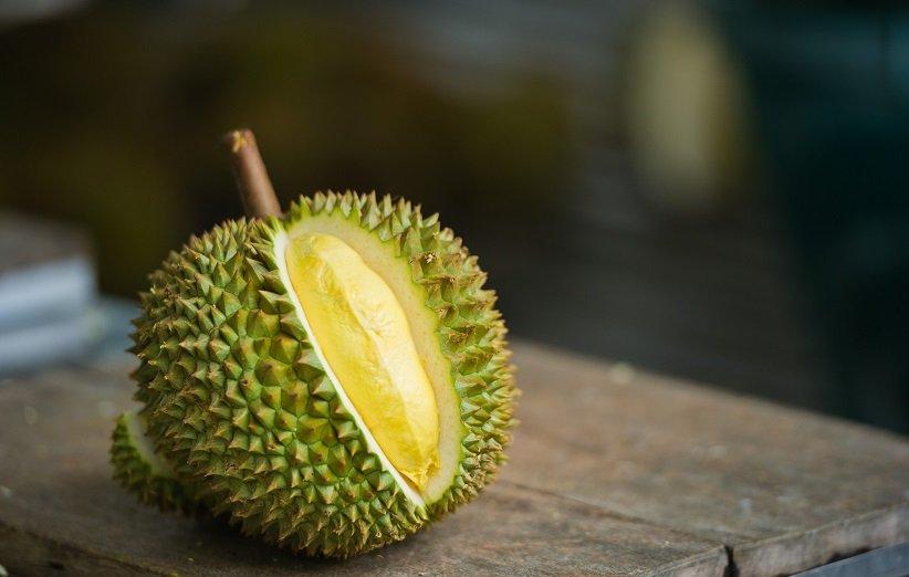 دوريان هي واحدة من أصح الفواكه في العالم