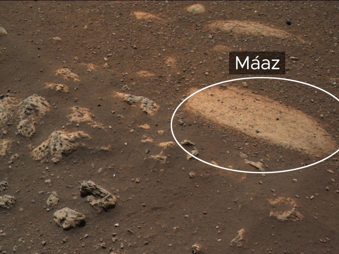 معاذ المريخ