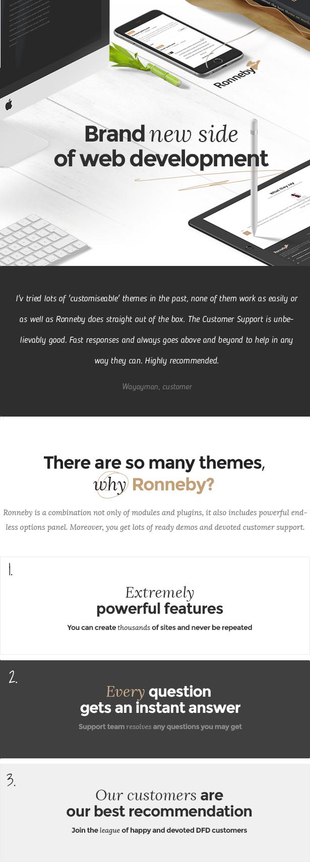 Ronneby - سمة WordPress عالية الأداء - 1