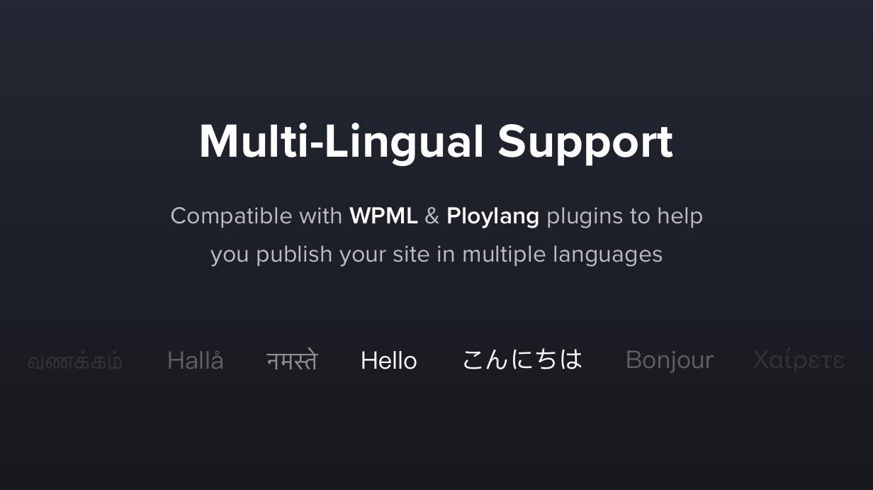 قابل للترجمة ومتعدد اللغات