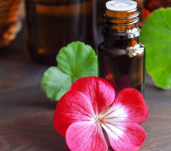 فوائد الزيت النباتي