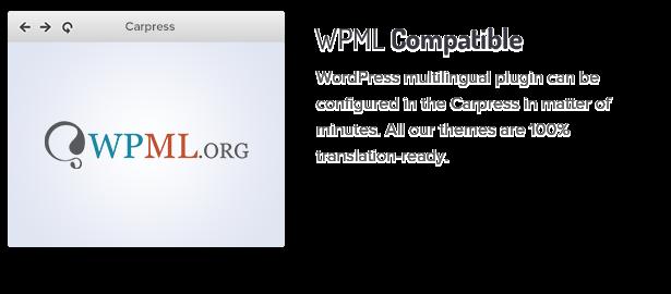 متوافق مع WPML