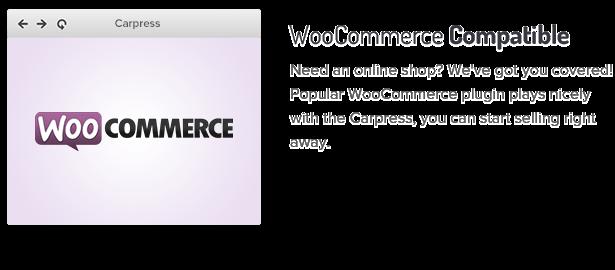 متوافق مع WooCommerce