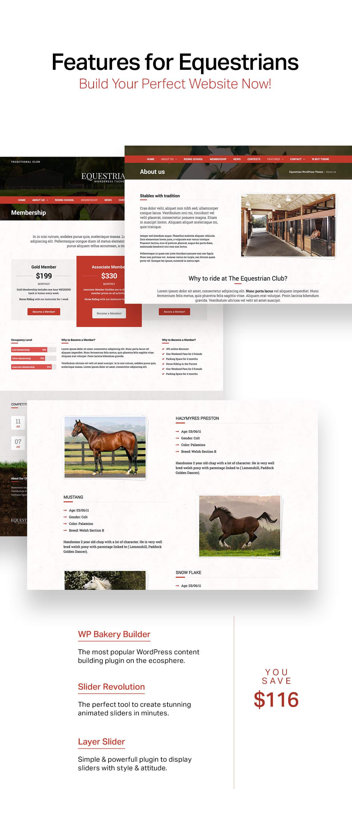 الفروسية - خيول واسطبلات WordPress Theme - 6