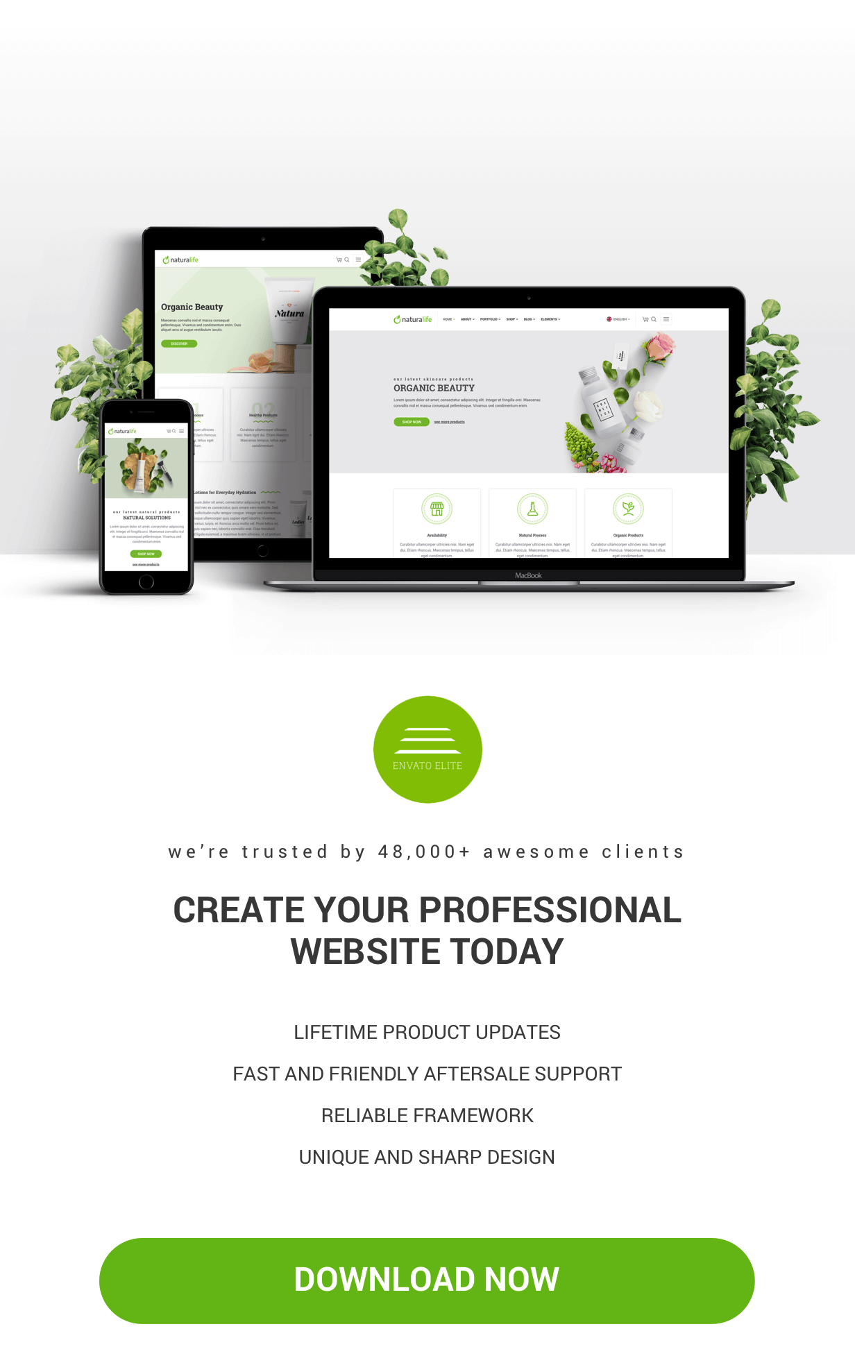 NaturaLife    سمة WordPress الصحية والعضوية - 5