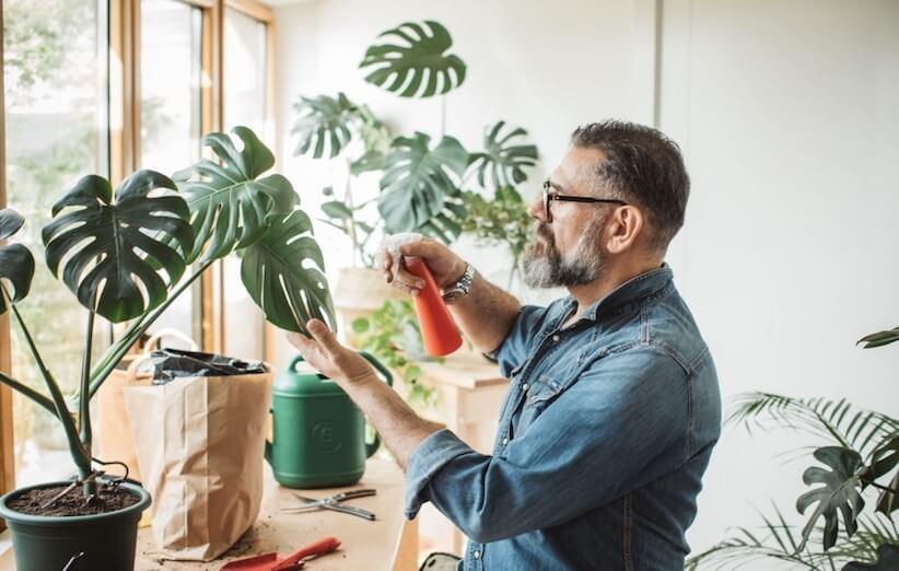خدعة التدبير المنزلي - ضع الزهور الطازجة في المنزل
