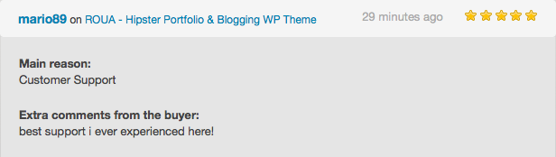 ROUA - موضوع Hipster Portfolio & Blogging WP - 4