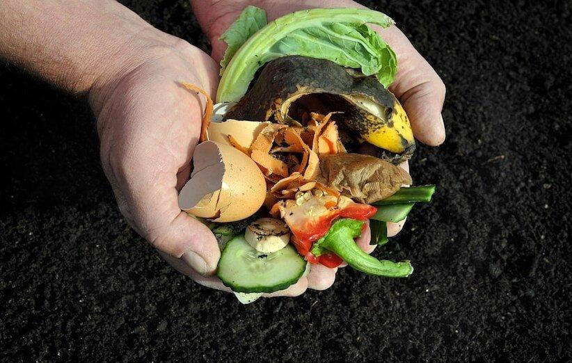 إنتاج الكومبوست - تحديد مخلفات الطعام