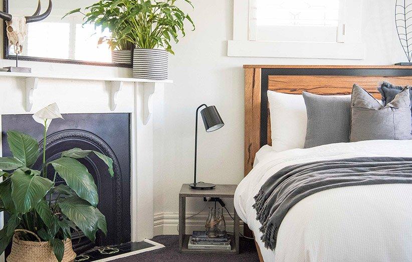 النباتات المنزلية في غرفة النوم
